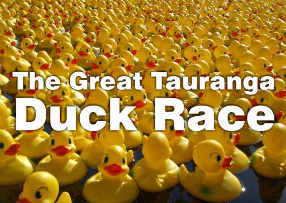 The Great Tauranga Duck Race